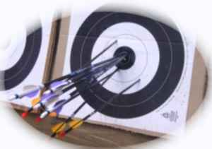 Photo of arrows in a IFAA Target